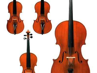 violini violino